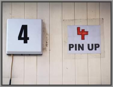 4 PIN UP